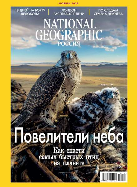журнал National Geographic №11 ноябрь 2018 Россия